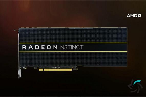 محصولات جدید شرکت AMD | اخبار | شبکه شرکت آراپل