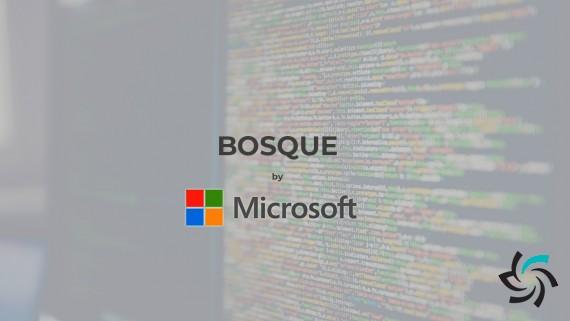 زبان برنامهنویسی Bosque | اخبار | شبکه شرکت آراپل