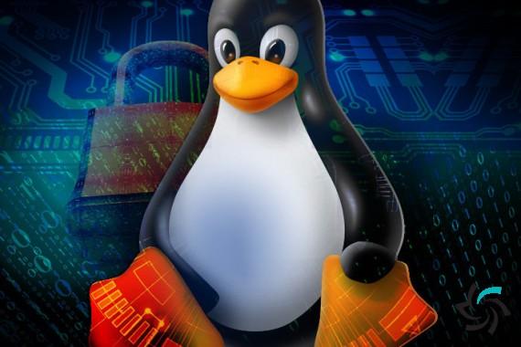 محدودیت هایی که به روز رسانی جدید لینوکس ایجاد خواهد کرد | اخبار | شبکه شرکت آراپل