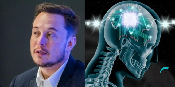 ساخت تراشه مغزی Neuralink | اخبار | شبکه شرکت آراپل