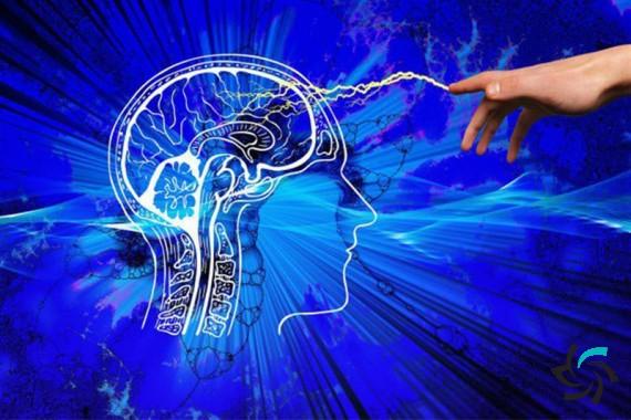 عملکرد مغز انسان در یادآوری یک خاطره یا رویدادی در گذشته | اخبار | شبکه شرکت آراپل