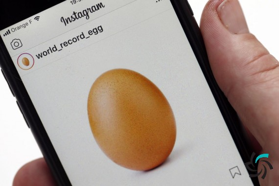 ماجرای یوجین، تخم مرغی که رکورد تعداد لایک اینستاگرام را از کایلی جنر گرفت | اخبار شبکه | شبکه کامپیوتری | شرکت شبکه